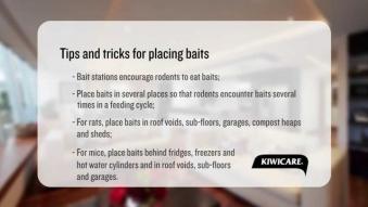 Embedded thumbnail for Kiwicare - Tips & tricks